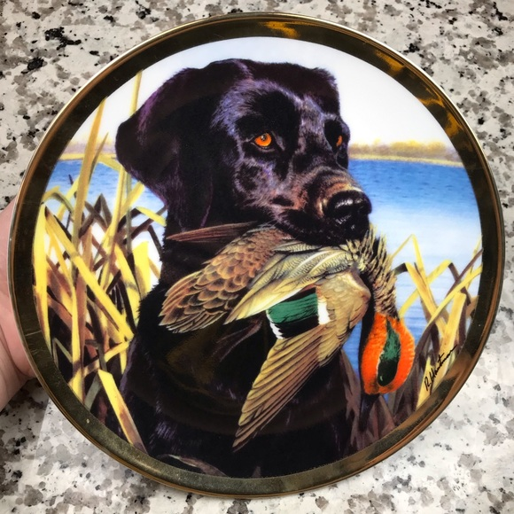 Camp Creek Other - Lab With Teal Camp Creek Collectors Plate!!❤️